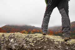 Hiker legs on birch trunk admire autumnal colorful forest landsc Royalty Free Stock Image