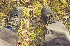 Hiker legs in the woods Royalty Free Stock Images