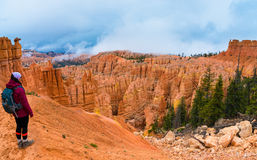 Hiker looking down a Peek-a-boo loop trail Bryce Canyon Stock Images