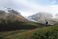 Hiker Looking Out Over Columbia Icefield Royalty Free Stock Photo