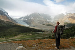 Hiker Looking Out Over Glaciers Stock Photography