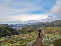Hiker man alone into the wild admiring volcanic landscape of green Icelandic valley. Laugavegur hiking trail, summer vacations royalty free stock photos