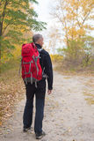 Hiker man with backpack walks through the colorful autumn forest. Around him the trees with yellow autumn leaves. Autumn haze Stock Photos