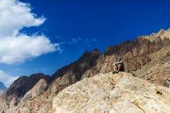 Hiker man take a rest. Stock Photos