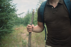 Hiker man walking with a wooden stick Royalty Free Stock Photography