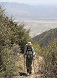 A Hiker on the Miller Canyon Trail Royalty Free Stock Photos