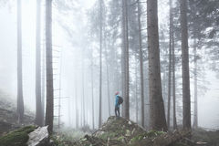 Hiker in misty forest stock photos