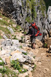 Hiker on a mounatin trek Royalty Free Stock Images