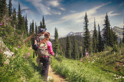 Hiker,  Mount Revelstoke National Park, Canada Stock Images