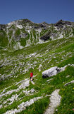 Hiker in the mountains. Allgäu Alps, Oberstdorf, Bavaria, Germany Royalty Free Stock Photo