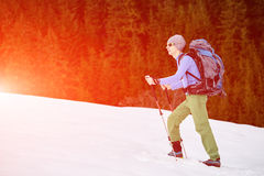 Hiker in the mountains Royalty Free Stock Images