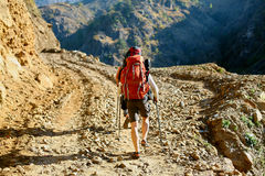 Hiker in the mountains Stock Images