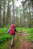 Hiker near Belukha Mountain, the highest in Siberia Royalty Free Stock Image