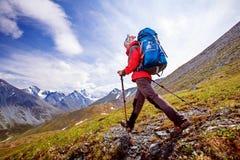 Hiker near Belukha Mountain Royalty Free Stock Image