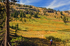 Hiker near Showers Lake, Carson Pass Stock Images