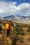 Hiker in New Zealand Royalty Free Stock Photo