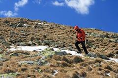 Hiker on Parang mountain stock image
