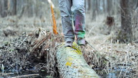Hiker passes through a stream on a log. stock footage