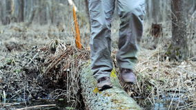 Hiker passes through a stream on a log. stock video footage