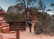 Free Hiker Passes West Rim Trail Sign Stock Images - 98315884