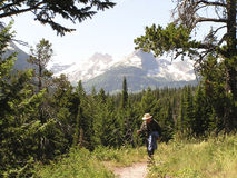 Hiker on path. Of East Glacier National Park, Montana Stock Photography