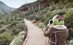 A Hiker Photographs the Lower Cliff Dwelling at Tonto National M Royalty Free Stock Image