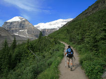 Hiker on Plain of Six Glaciers Trail Royalty Free Stock Image