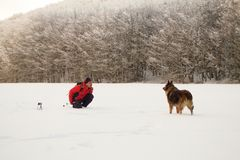 Hiker playing with his dog in the snow. Europe forest Royalty Free Stock Photos