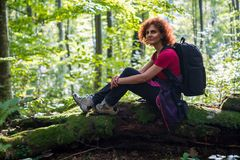 Hiker resting in the forest. Woman hiker sitting on a log after a long trail Stock Photos