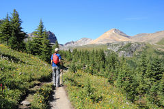 Hiker in the Rocky Mountains - Alberta, Canada stock photography