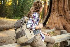Hiker in Sequoia national park in California, USA. Hiker in Sequoia national park in California. USA royalty free stock image