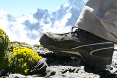 Hiker shoes Royalty Free Stock Images
