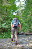 Hiker in Slovakian Paradise Stock Images