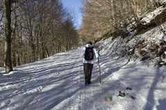 Hiker and snow Royalty Free Stock Photos