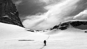 Hiker on snow plateau. Black and white panoramic view. Royalty Free Stock Photo