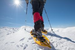 Hiker snowshoeing in winter mountains during sunny day.  Royalty Free Stock Images
