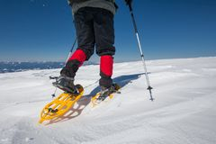 Hiker snowshoeing in winter mountains during sunny day.  Royalty Free Stock Photos