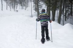 Hiker with snowshoes. Winter adventure royalty free stock images