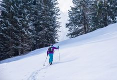 Hiker with snowshoes on snow trail in winter landscape of forest in Oberstdorf, Bavaria Alps in South of Germany. Beautiful. Landscape with coniferous trees and stock photos