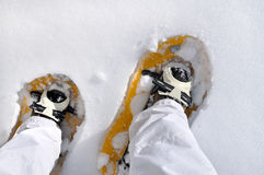 Hiker with snowshoes. Top view on hiker& x27;s foot wearing snowshoes Royalty Free Stock Images