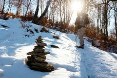 Hiker walks in snow-covered mountain. Hiker with snowshoes walks in the snowy woodland on a bright morning Royalty Free Stock Images