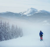 Hiker with snowshoes in winter. Carpathian, Ukraine, Europe Stock Images