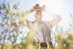 Hiker standing on country trail looking through binoculars Royalty Free Stock Images