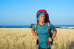 Hiker standing on a field Royalty Free Stock Photos