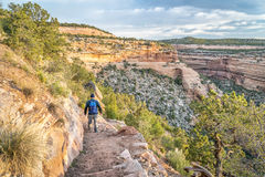 Hiker on a steep trail in Colorado National Monument Stock Images
