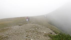 Hiker teenage woman walking to explore mountains attractions on path with fog with tourists in background -. Hiker teenage woman walking to explore mountains stock footage