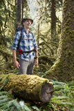 Hiker in temperate rainforest Stock Images