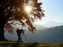 Hiker tourist man with camera on grassy valley on background of mountain landscape under big tree. Tourist photographer with backpack using tripod and royalty free stock photo
