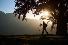 Hiker tourist man with camera on grassy valley on background of mountain landscape under big tree. stock photo