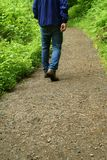 Hiker on the trail. Royalty Free Stock Images